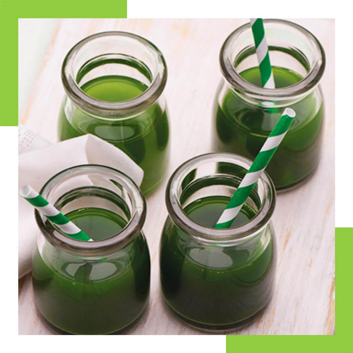 Water Celery Green Vegetable Juice